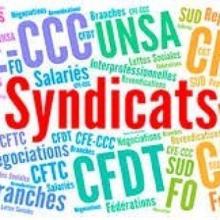 Représentation syndicale au sein d'une UES (Unité Economique et Sociale)